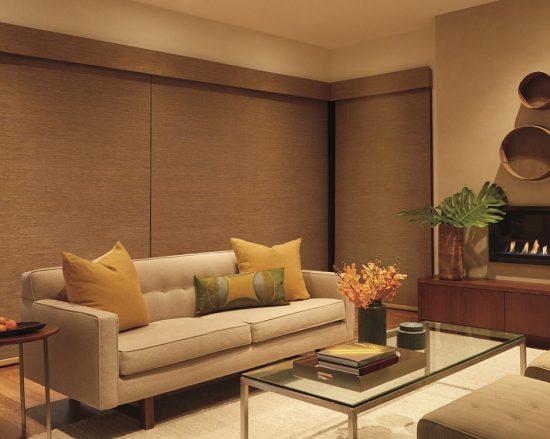 designerroller_powerview_livingroom